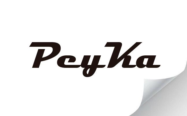 Nuevo logo para Peyka